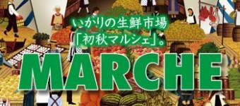 marche_350_160