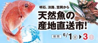18_sanchoku_ura_350_160-340x150