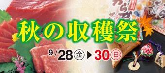 18_aki_s_ura_350_160-340x150