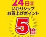 24_kaku